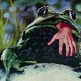 frogs_thumb